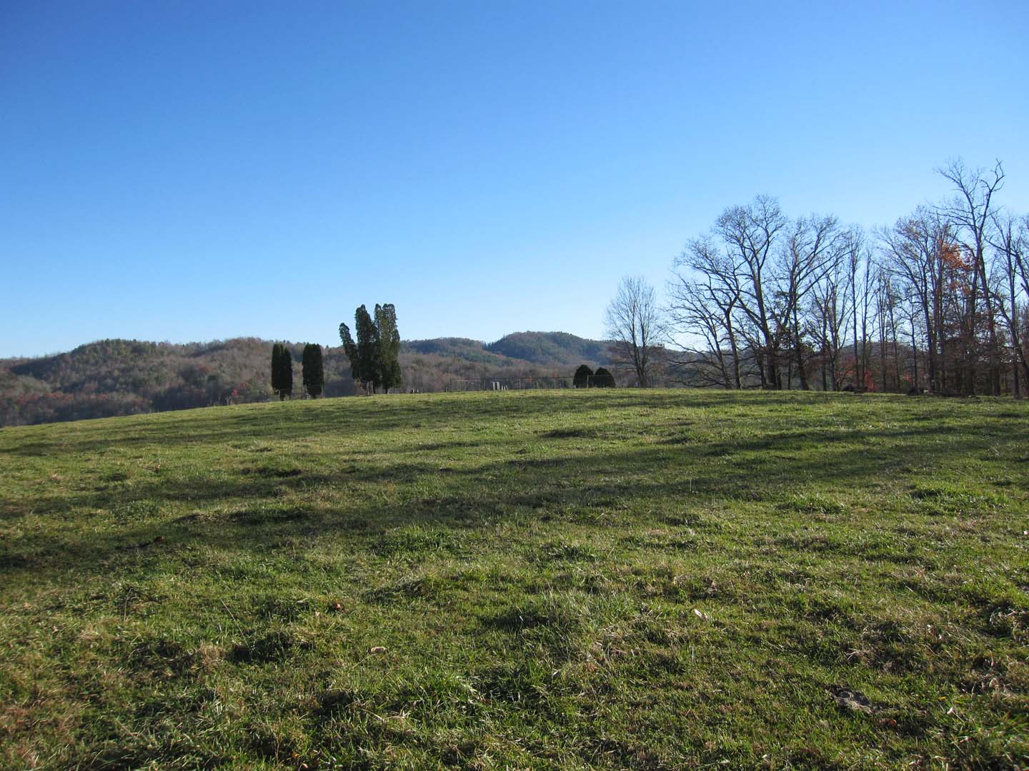 Virginia farm for sale for Pond reeds for sale